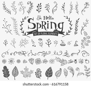 Vector floral spring design elements in doodle style, hand-drawn flowers and insects and plants