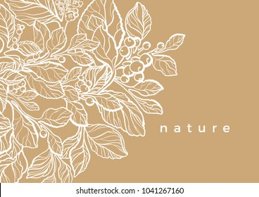 Vector floral template of mate branch with leaf, flower, berry Botanical art line drawing design Realistic plant in hugge style Organic graphic sketch White lace, nature background, herb illustration