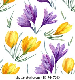 Vector floral watercolor seamless background with blue violet yellow crocus flower on white