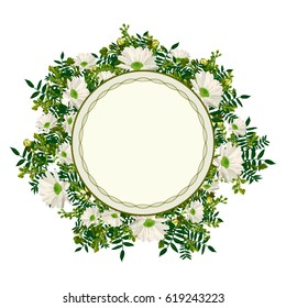 vector flower frame with  chamomile, decorative plants for greeting cards and invitations wedding, birthday, mother's day