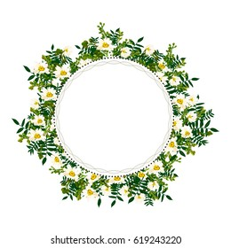 vector flower frame with, chamomile, decorative plants for greeting cards, invitations of wedding, birthday, mother's day