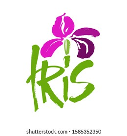 Vector flower logo. Floral background. Calligraphy ink. Stylized calligraphic ink iris. Modern brush calligraphy.