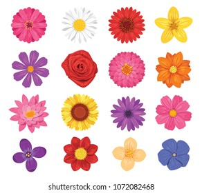 Vector flower set isolated on white background