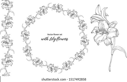 Vector flower set with Lily flowers