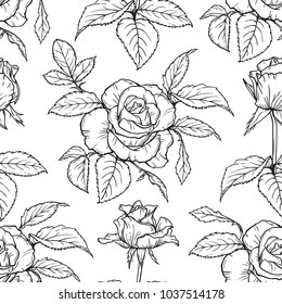Vector Flowers and Leaves Seamless Pattern. Hand drawn Branches of Rose Flower Sketch. Beautiful Bouquet of Summer garden flowers. Floral Background. Plants Wallpaper