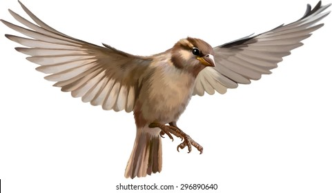 vector. Flying sparrow on a blurred background