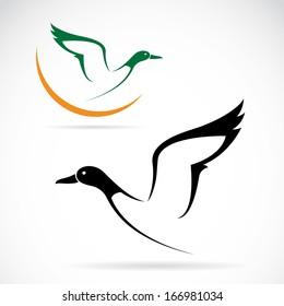 Vector of flying wild duck design on white background. Wild Animals. Bird. Easy editable layered vector illustration.