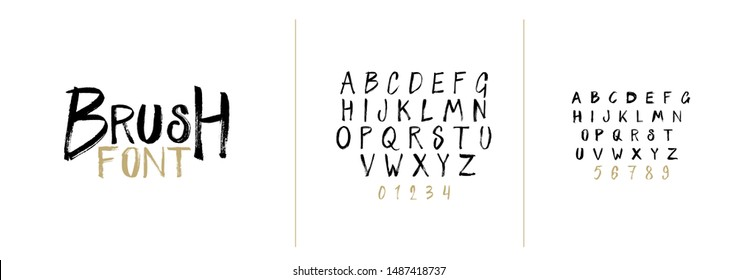 vector font set. Hand-drawn decorative font by brush. set of letters in the style of the brush stroke. hipster style