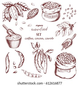Vector food collection with cocoa, carob, coffee. Hand drawn illustration bags of coffee, cocoa beans, powder, branch of coffee and cocoa and carob in sketch style. For restaurant menu, food wrapping