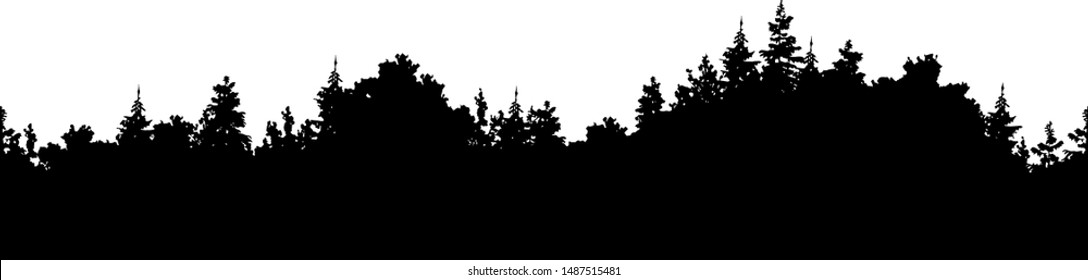 Vector forest background. Illustration of a silhouette panorama of a coniferous forest