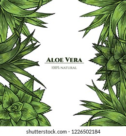 Vector frame with aloe vera. Hand drawn. Vintage style