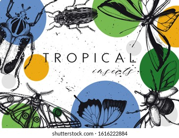 Vector frame design with high detailed insects sketches. Hand drawn beetles and butterflies illustrations in trendy collage style. Entomological background with insects, geometric shapes and textures.