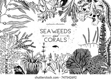 Vector frame with hand drawn black corals, fish, stars sketch. Vintage background with underwater natural elements. Decorative sealife illustration isolated on white. Wedding design.