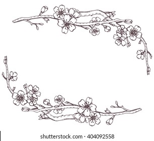 Vector frame with hand drawn graphic branches of a blossoming cherry tree (sakura)