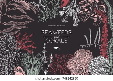 Vector frame with hand drawn sea corals, fish, stars sketch. Vintage background with underwater natural elements. Decorative sealife illustration. Wedding design.