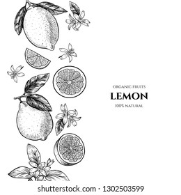 Vector frame with lemons and flowers. Hand drawn. Vintage style