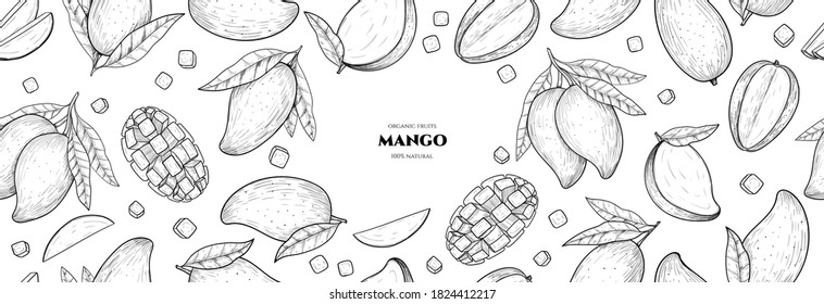 Vector frame with mango. Vector seamless pattern. Hand drawn illustrations.
