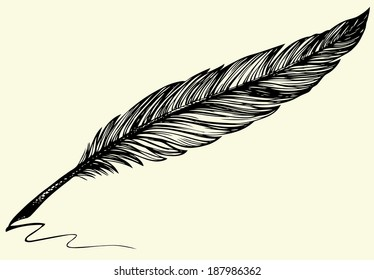 Vector freehand drawing of dark bird feather isolated on white background