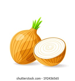 Vector fresh brown onions on white. Vector illustration.