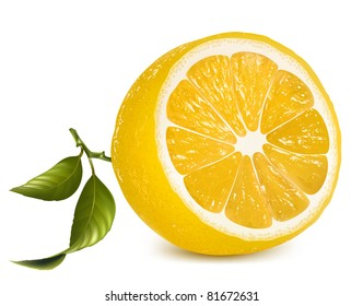 Vector. Fresh lemon with leaves.
