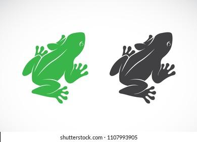 Vector of frogs design on white background. Amphibian. Animal. Easy editable layered vector illustration.