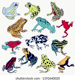 Vector frogs set hand drawn illustration. Violet contour, various colors, fully editable image.