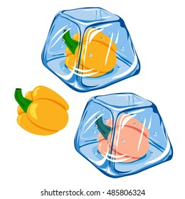 Vector Frozen pepper in ice cube isolated on white background EPS 8