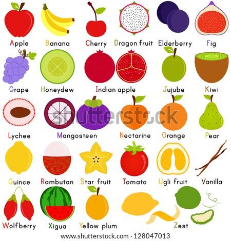 vector fruit representing alphabet z dictionary stock vector