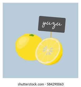 Vector Fruit - Yuzu