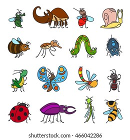 Vector funny insects and cute bugs on white background