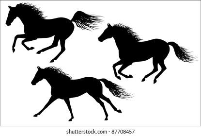 Vector galloping horses