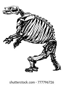 Vector giant ground sloth skeleton. Bones of extinct californian animal. Ink drawing of sloth fossils