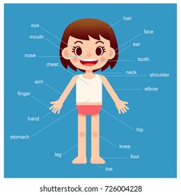 Vector girl character showing parts of the body with vocabulary on blue background.