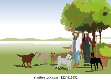 vector girl and dogs walking in the farm.farm concept