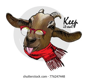 Vector goat with red glasses and scarf. Hand drawn illustration of dressed goat. Keep it real.
