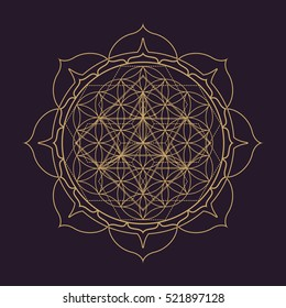 vector gold monochrome design abstract mandala sacred geometry illustration Flower of life Merkaba lotus isolated dark brown background