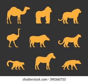 Vector gold set of silhouettes african animals. Icon dromedary, gorilla and lion. Figure ostrich, warthog and leopard. Symbol zebra, lemur and hyena. Silhouette african animals isolated.