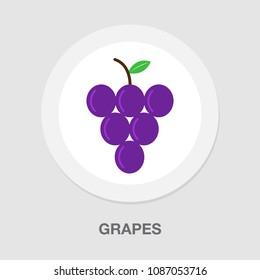 vector grapes - nature illustration, fruit symbol - wine icon