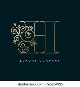 Vector graphic elegant logotype / Letter H