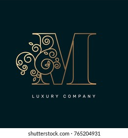 Vector graphic elegant logotype / Letter M