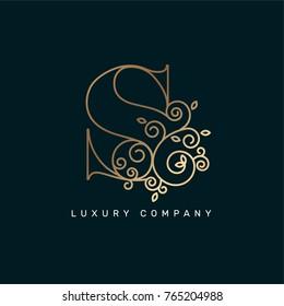 Vector graphic elegant logotype / Letter S