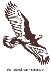 Vector graphic illustration of a flying eagle with open wings