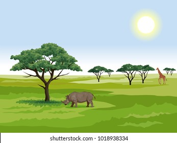vector graphic illustration - landscape of the African Savannah on a Sunny day. rhinoceros next to acacia, a group of trees and giraffe on the horizon.