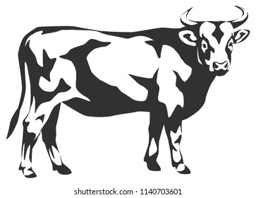 vector graphic illustration of stylized cow