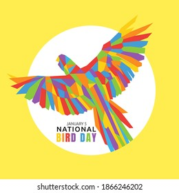 vector graphic of national bird day good for national bird day celebration. flat design. flyer design.flat illustration.