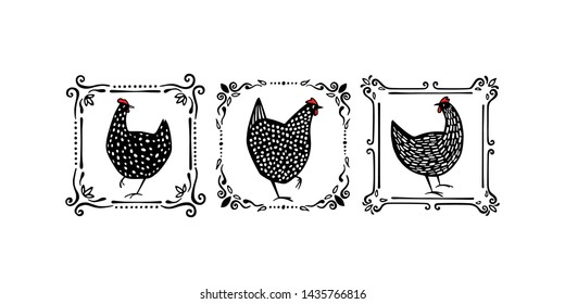 Vector graphic set of hand drawn black speckled hens in vintage frames. Beautiful ink drawing. Perfect elements for food or farming design.