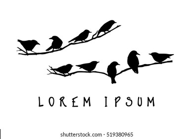 Vector graphic set of hand drawn North America birds sitting on a branch. Ink drawing, graphic style.