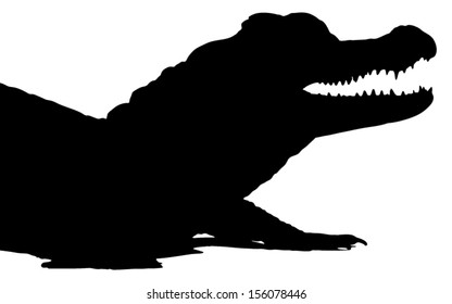 Vector graphic silhouette of an American Alligator.