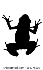 Vector graphic silhouette of an Azure Poison Dart frog.