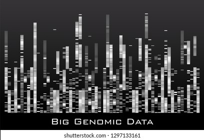 Vector graphic template monochromatic big genomic data visualization, DNA test and genome map sequence.